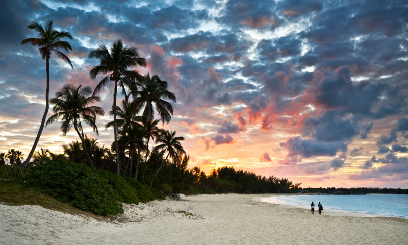 Tropical Caribbean Sand Beach Paradise at Sunset.